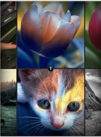 color-thief-applicazioni-iphone-2-avrmagazine