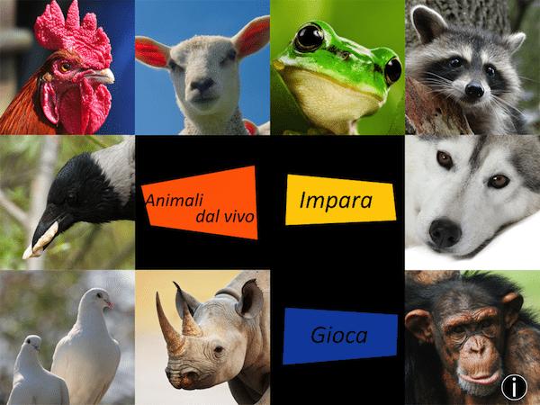 animali-dal-vivo-applicazioni-iphone-avrmagazine