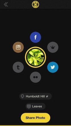 hipsmatic-oggi-applicazione-iphone-2-avrmagazine