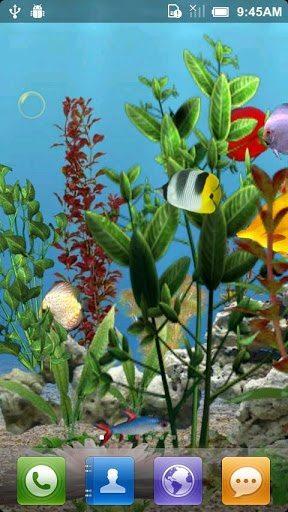 ocean aquarium 3d 2-applicazione-android-avrmagazine