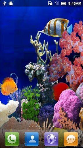 ocean aquarium 3d-applicazione-android-avrmagazine