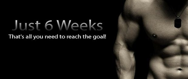just6weeks-applicazione-android-1-avrmagazine