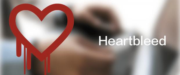 Heartbleed-opensll-bug-avrmagazine
