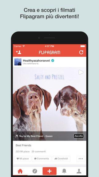 Flipagram-applicazioni-per-iPhone-avrmagazine 1