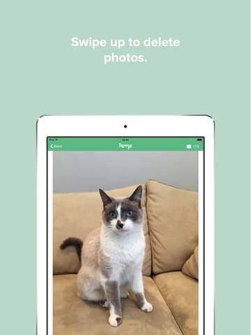 Purrge-applicazioni-per-iPhone-avrmagazine 2