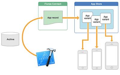 novita iOS9 ridimensionamento app novita iOS applicazioni iphone avrmagazine