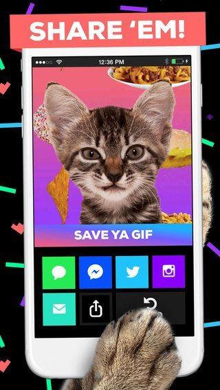 Giphy applicazioni per iphone avrmagazine 2