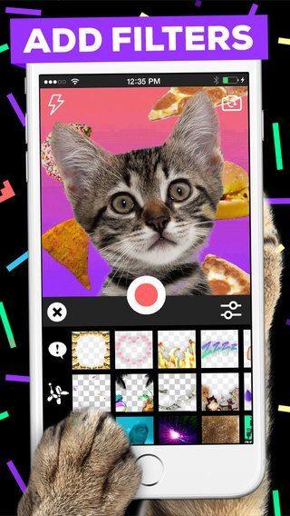Giphy applicazioni per iphone avrmagazine 3