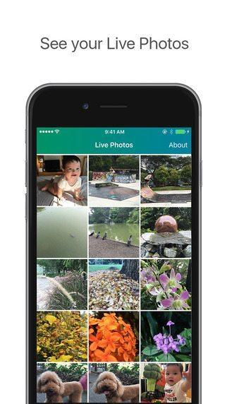 Lively applicazioni per iphone avrmagazine 1