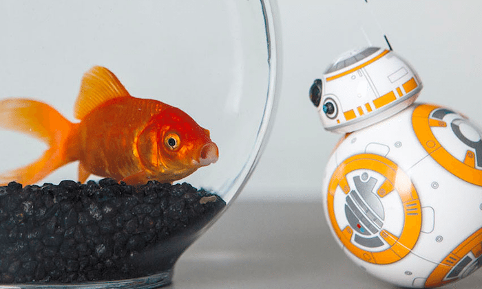 Sphero BB-8 Star Wars avrmagazine 2