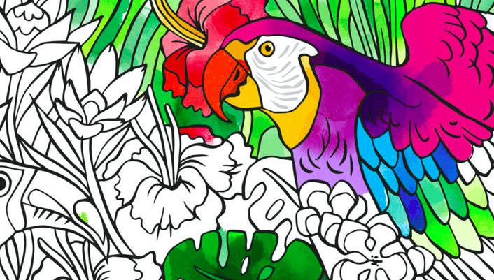 Tayasui Color avrmagazine
